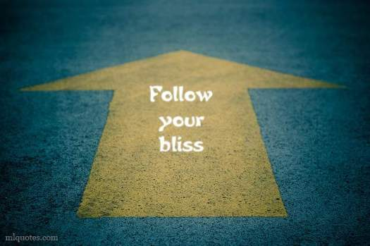 FollowYourBliss