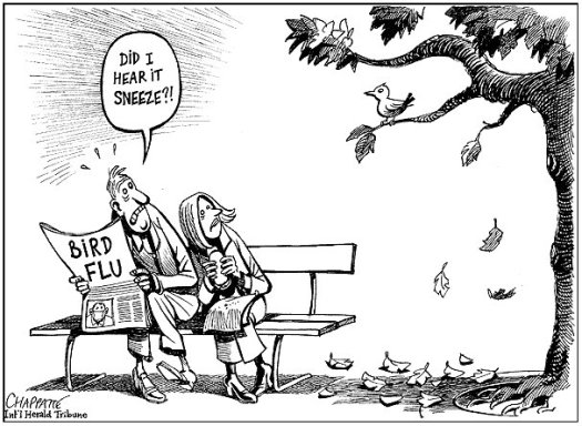 chappatte-bird-flu-2