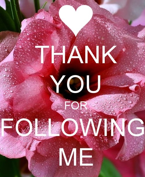 43090-Thank-You-For-Following-Me