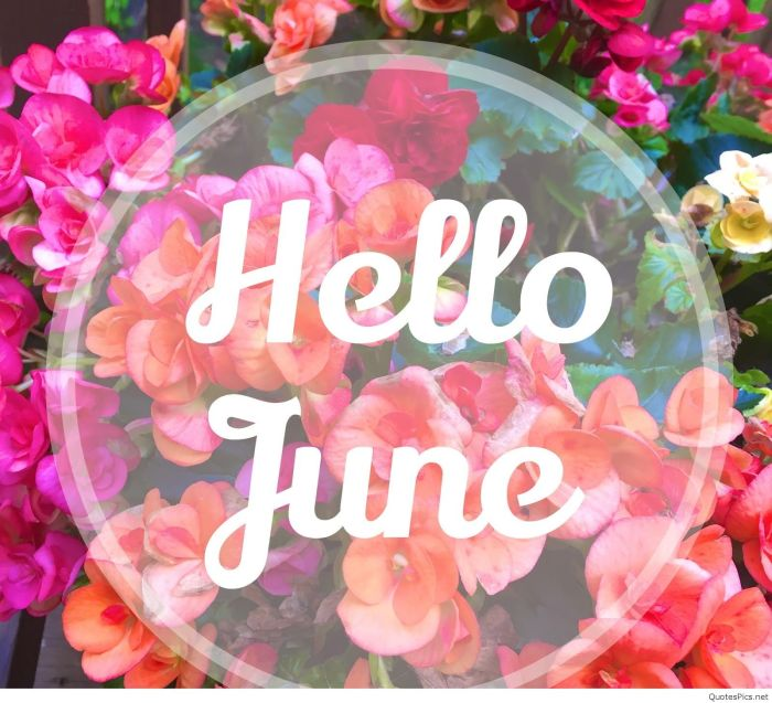 CarolynConnelly.com-Hello-June-Photo