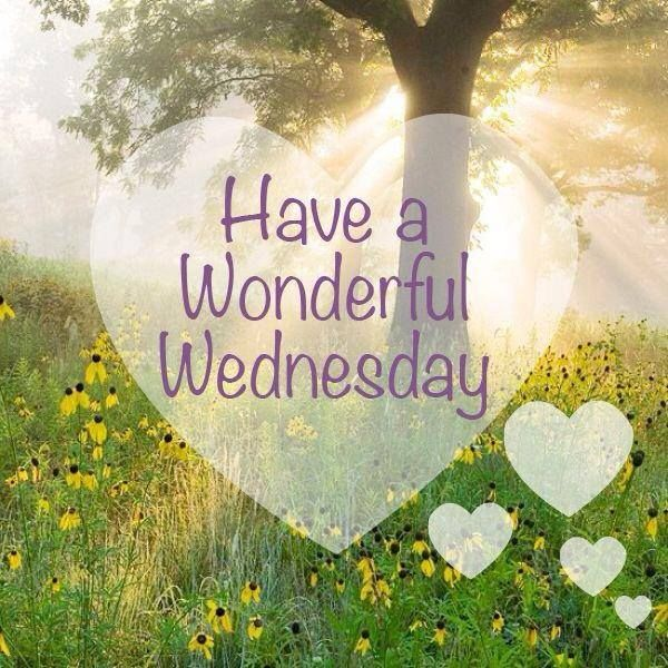 163129-Have-A-Wonderful-Wednesday