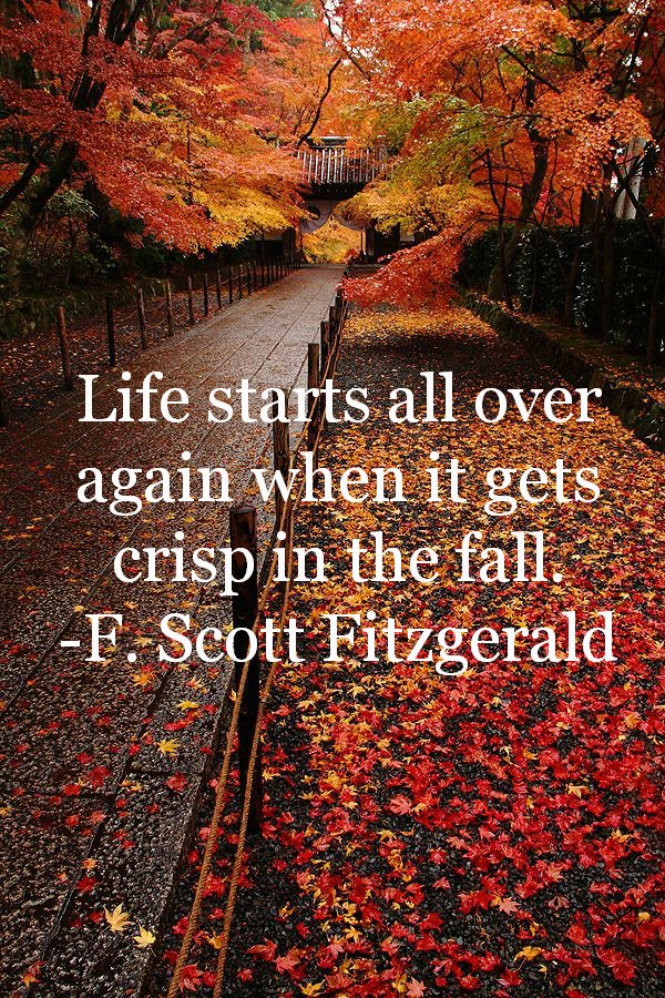 Fall2BQuote-1