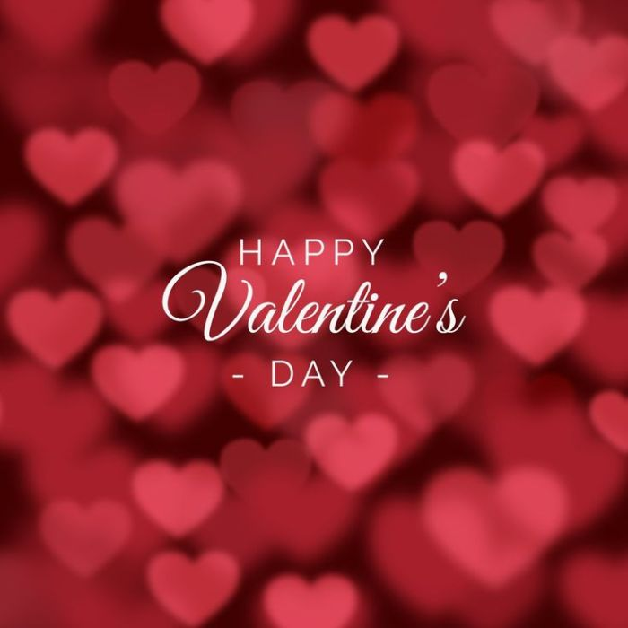1f3a3cef5afa50f89713abaeb6b87455--happy-valentines-day-wishes-valentines-day-background