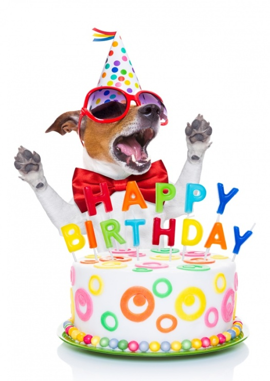 dog-cake-happy-birthday-postcard-greeting-card-send-online-2637_57